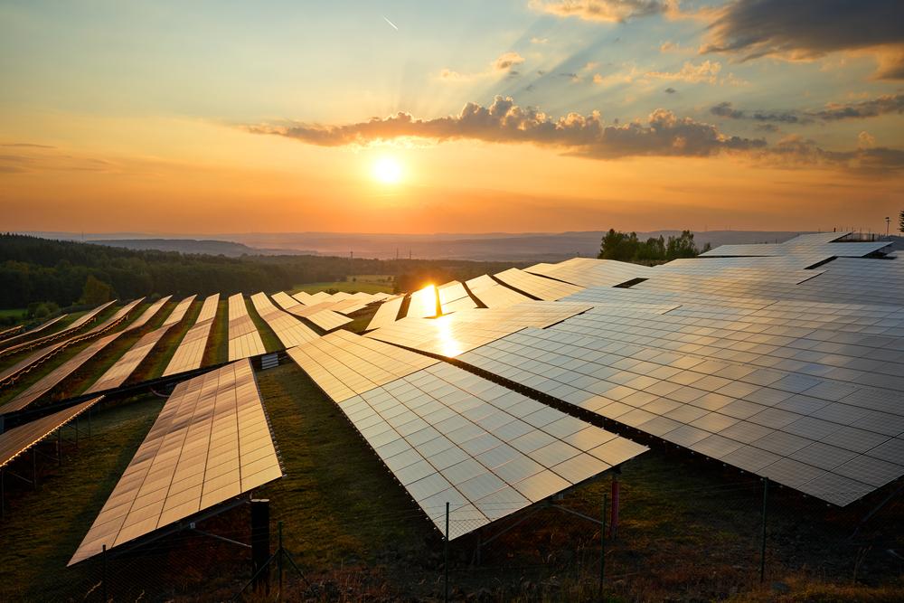 Solar Farm | Panel cleaning
